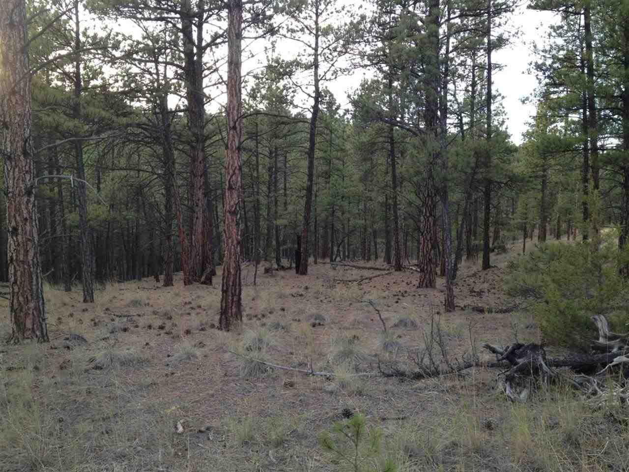 31 acres Helena, MT