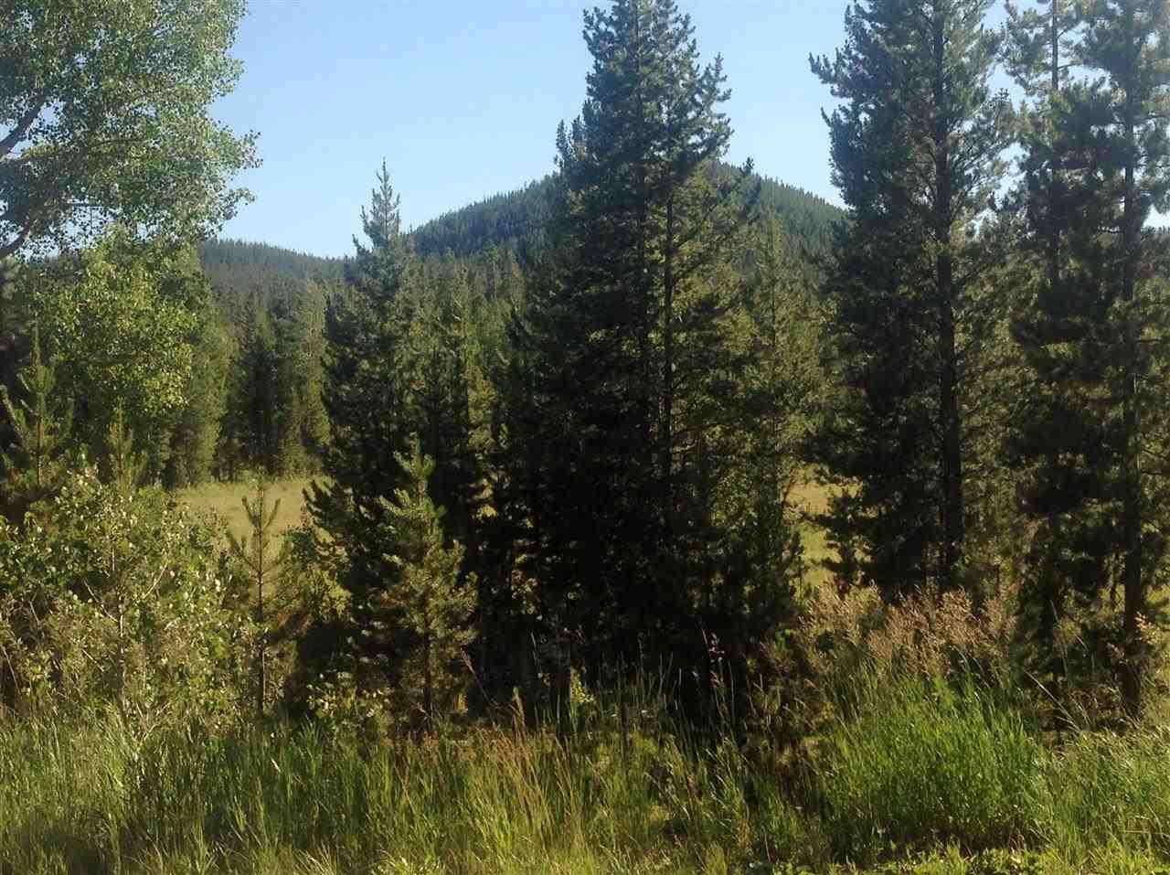 Real Estate for Sale, ListingId: 28228235, Butte,MT59701