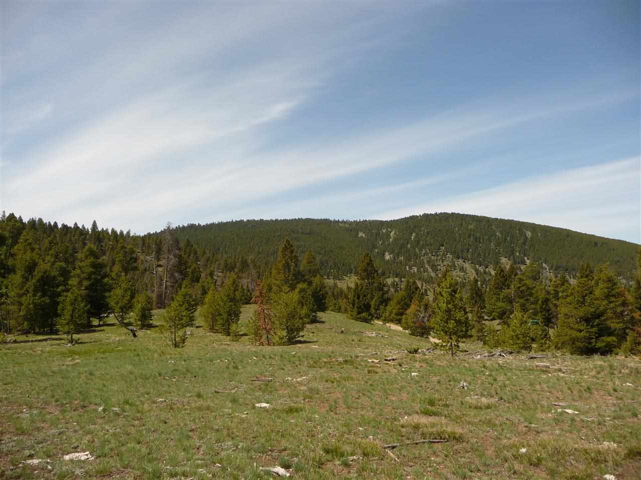 24 acres Helmville, MT