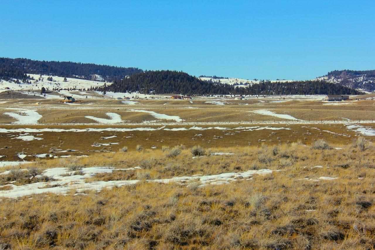 Real Estate for Sale, ListingId: 28228154, Butte,MT59750