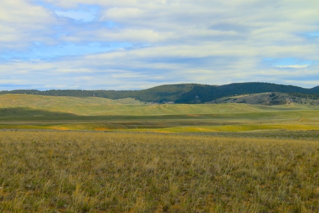Image of Acreage for Sale near Butte, Montana, in Silver Bow County: 45 acres