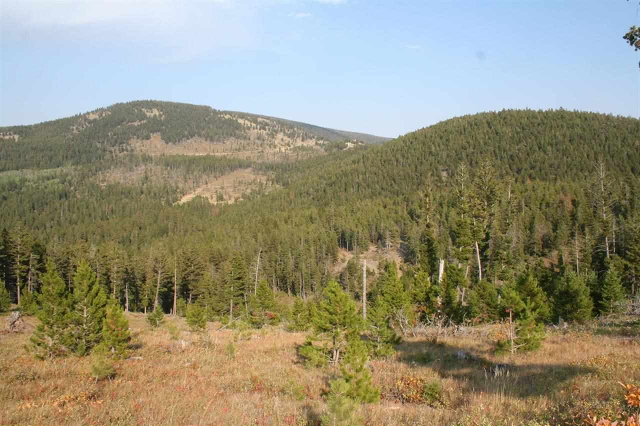 Real Estate for Sale, ListingId: 28228860, Wolf Creek,MT59648