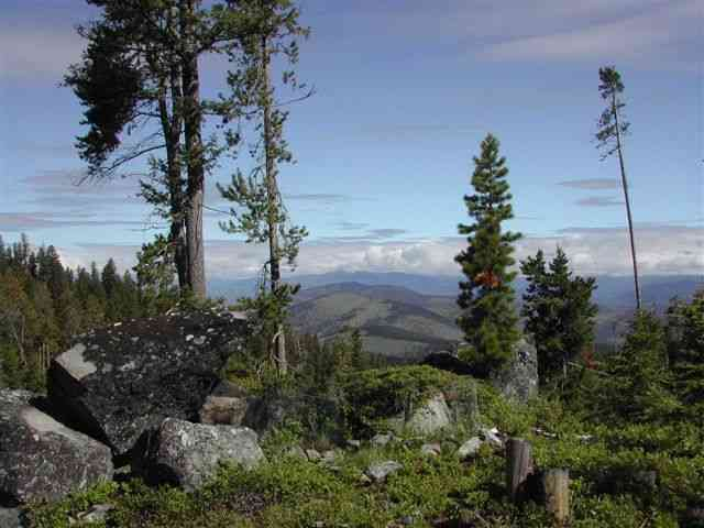 34 acres by Helmville, Montana for sale