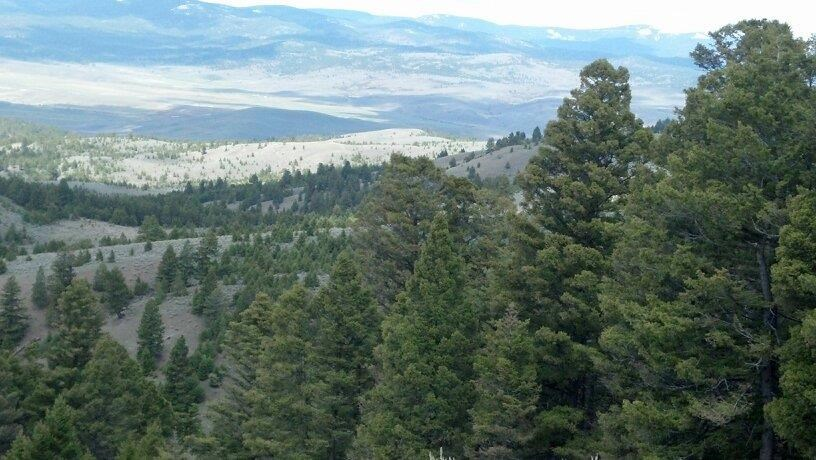 53 acres Helmville, MT