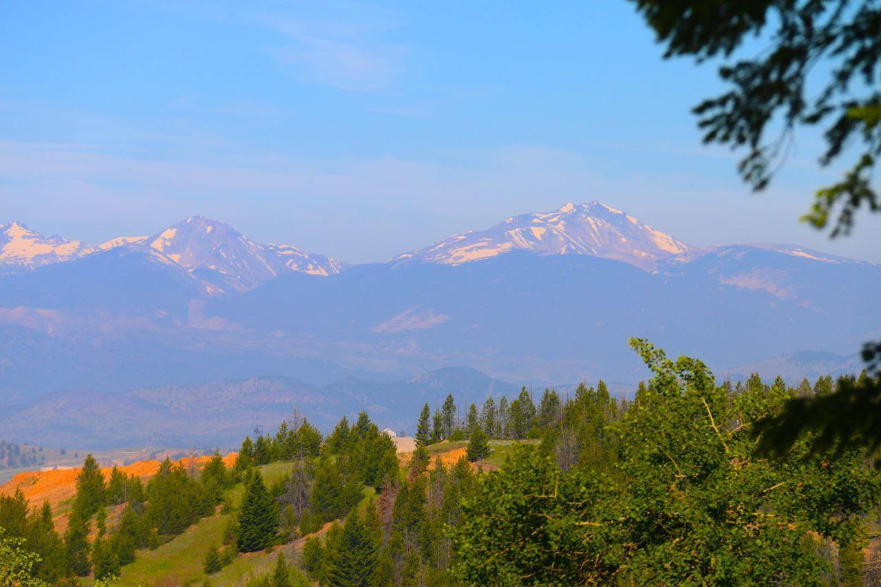 Real Estate for Sale, ListingId: 28919082, Butte,MT59701
