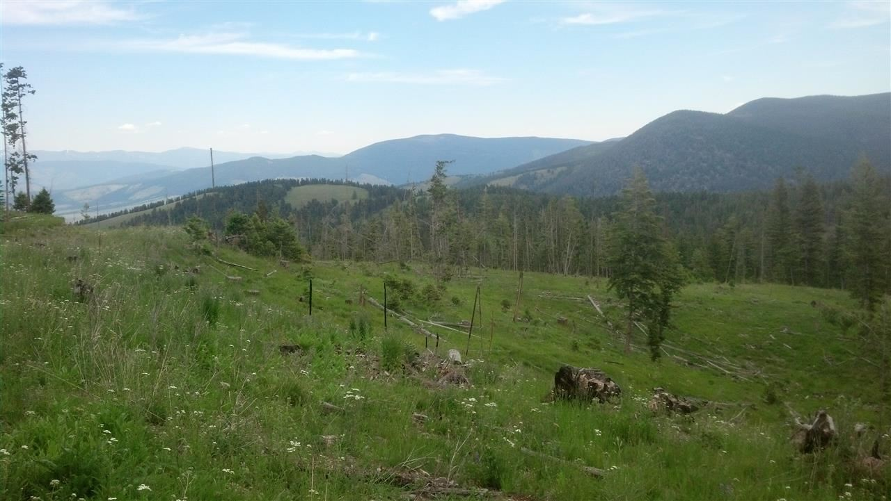 40 acres Helmville, MT