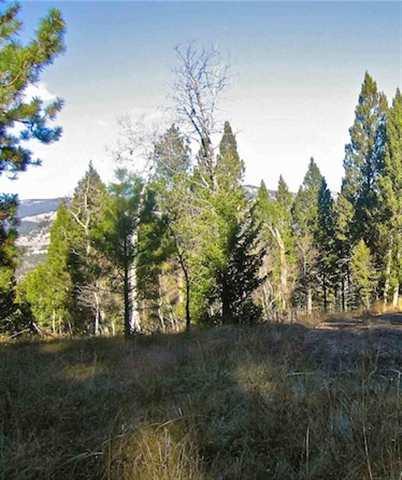20 acres Helmville, MT
