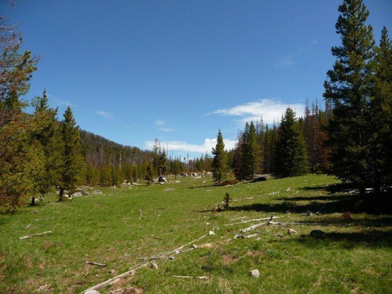63 acres Basin, MT