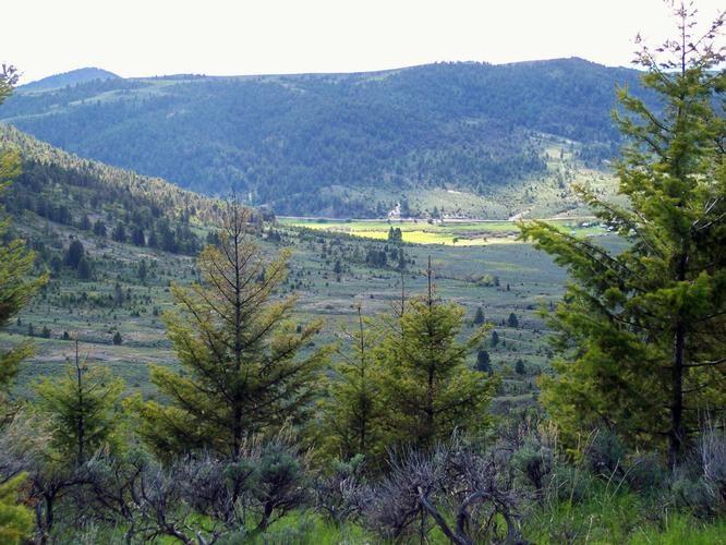 Real Estate for Sale, ListingId: 33431916, White Sulphur Springs,MT59645