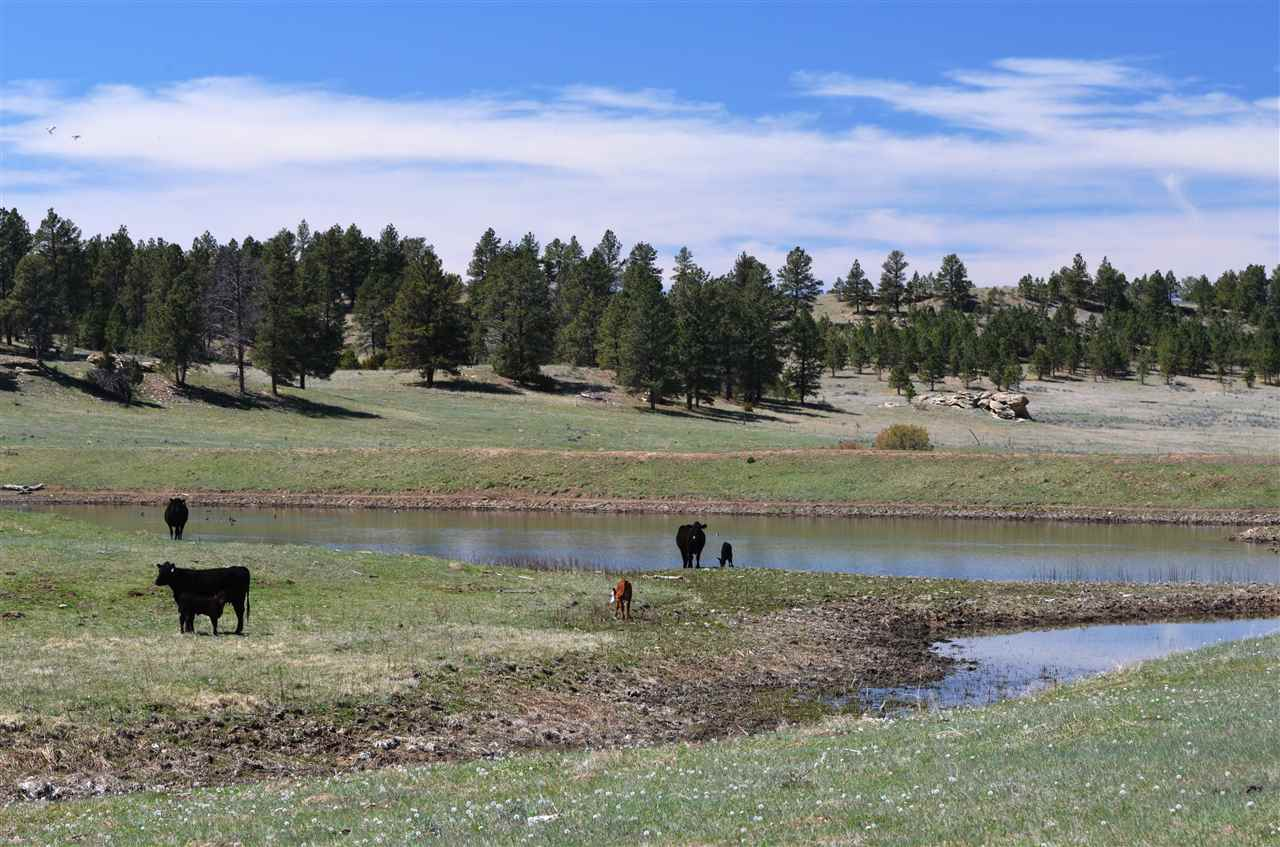 2,874 acres Broadus, MT