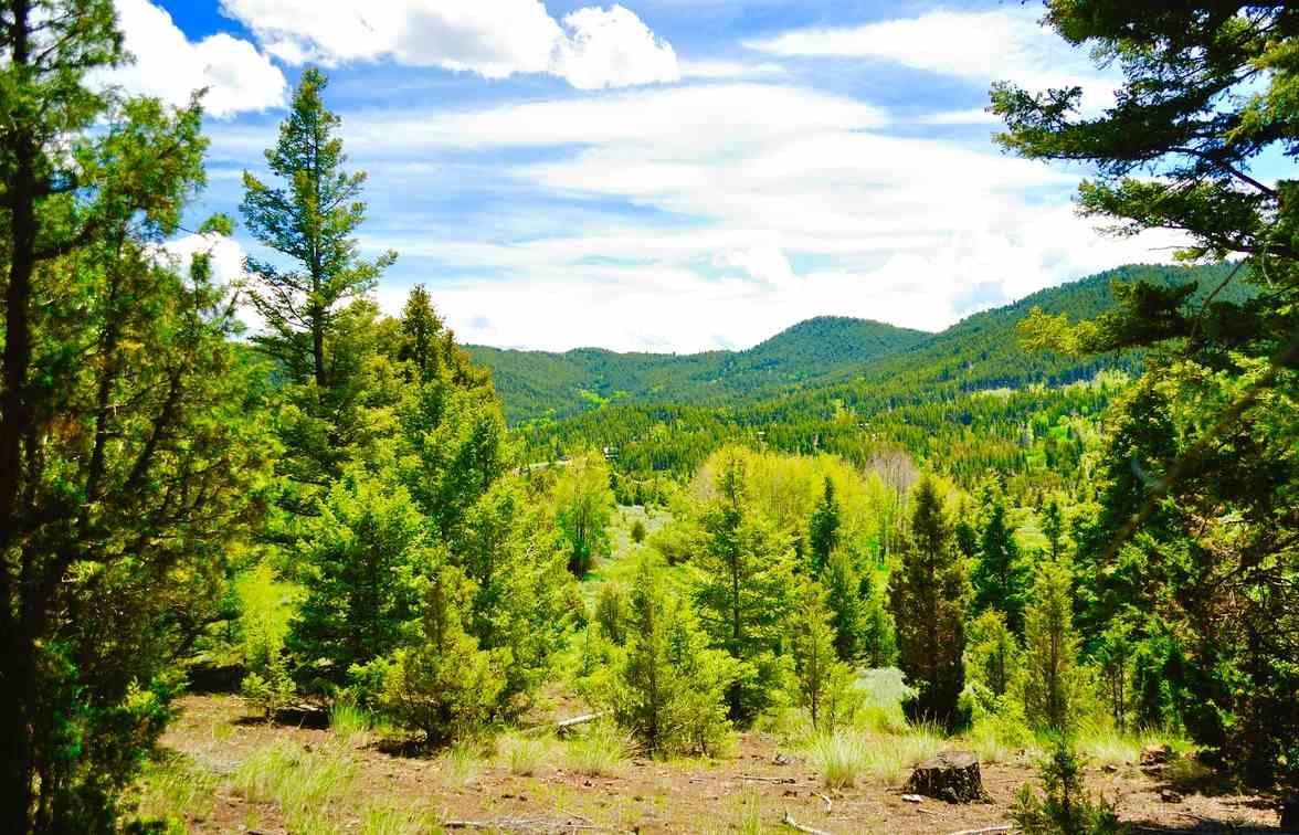 Real Estate for Sale, ListingId: 36605268, Butte,MT59701