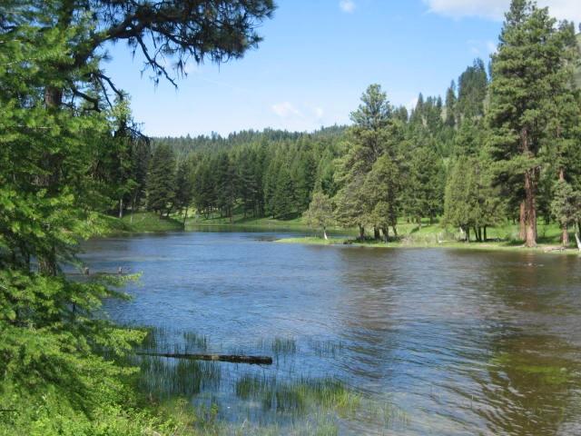 44458 Elbow Lake Rd, Seeley Lake, MT 59868