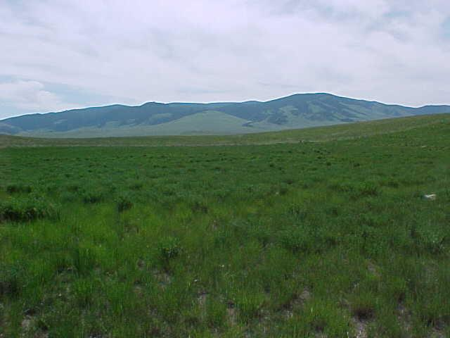 Arrowhead Cir, Outside Area - Southeast, MT 59645