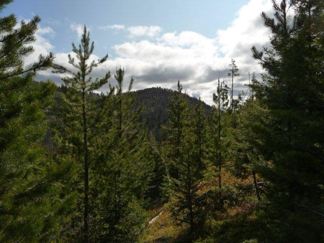 Image of  for Sale near Lincoln, Montana, in Powell County: 19 acres