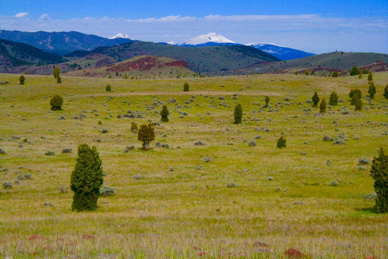 Image of  for Sale near Ramsay, Montana, in Silver Bow County: 252 acres