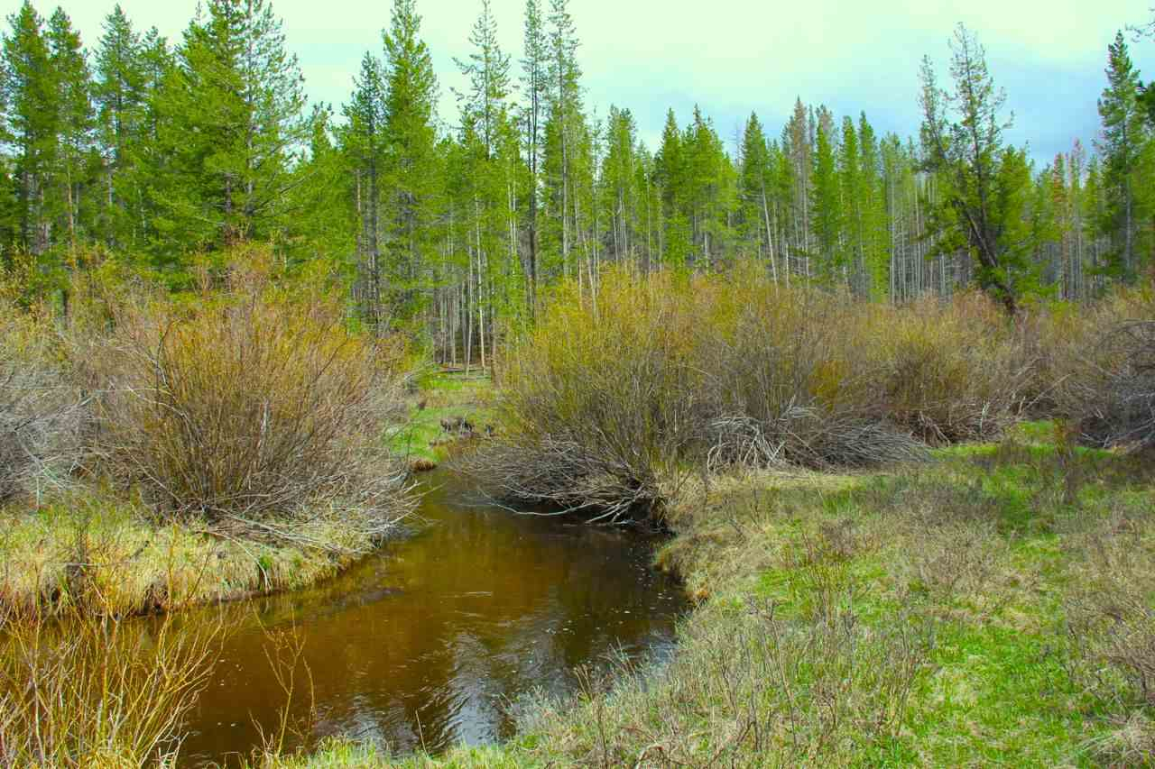Image of  for Sale near Anaconda, Montana, in Deer Lodge County: 5 acres