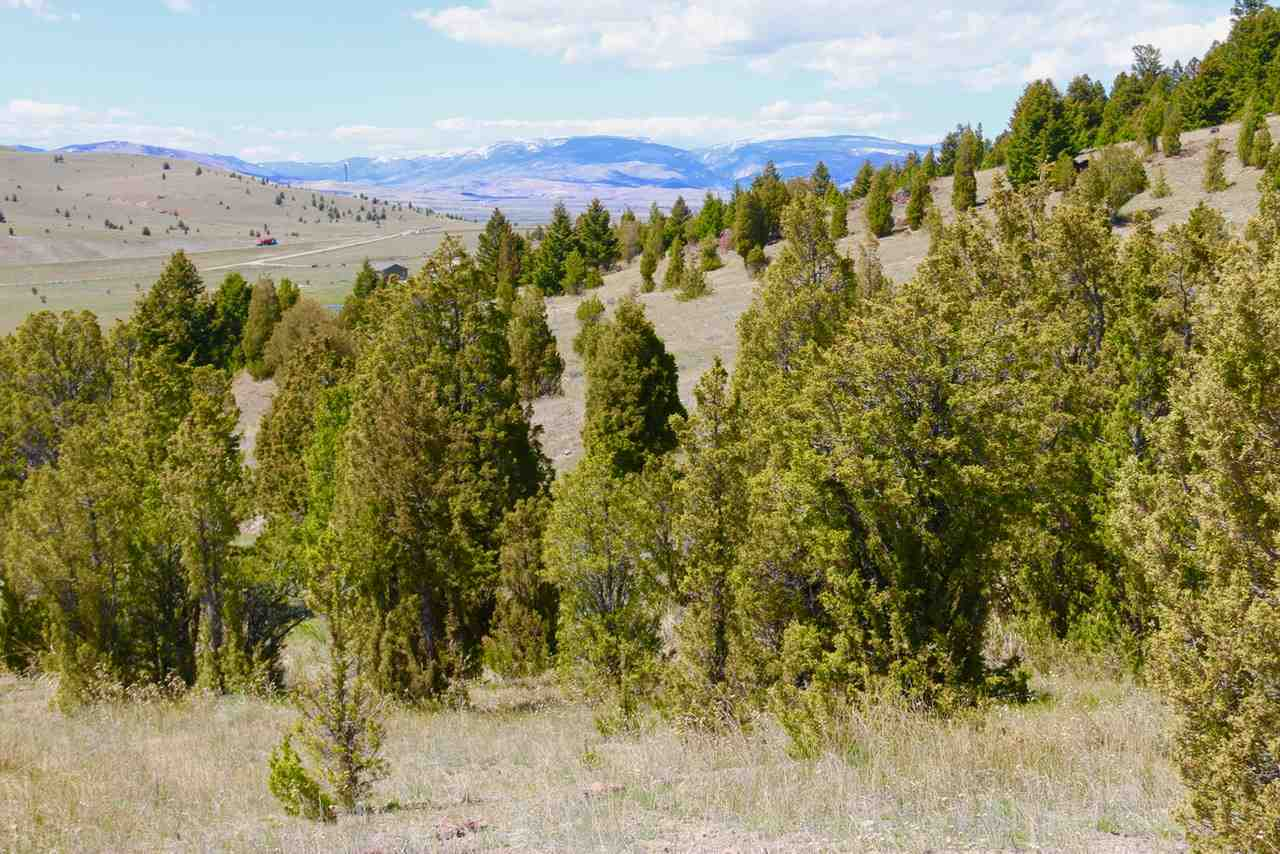 Image of  for Sale near Butte, Montana, in Silver Bow County: 42 acres