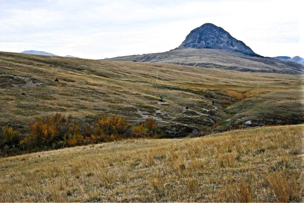 5435 Smith Creek Road Augusta, MT 59410
