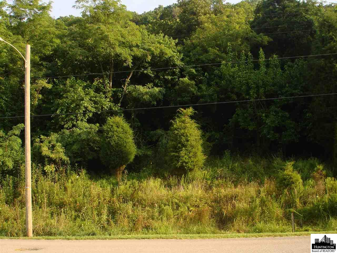 primary photo for 6 Williamsburg Drive - Lot, Barboursville, WV 25504, US