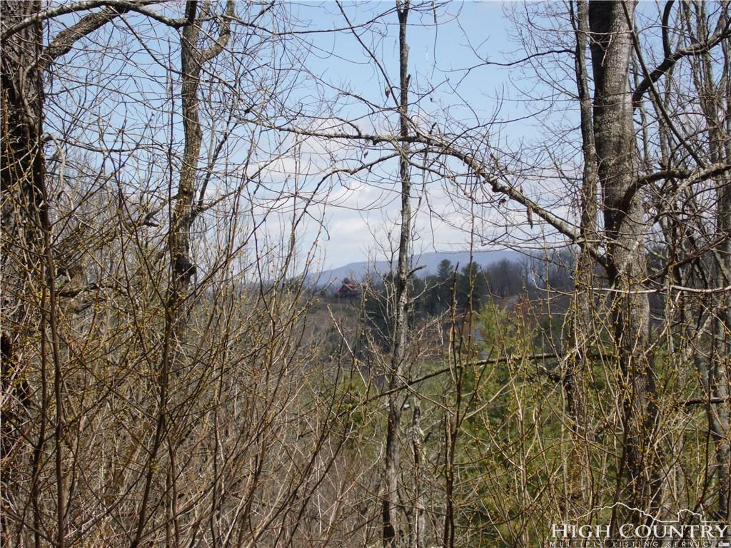 Tbd River Forest Road Piney Creek, NC 28663