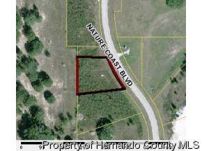 Real Estate for Sale, ListingId: 18860586, Brooksville,FL34602