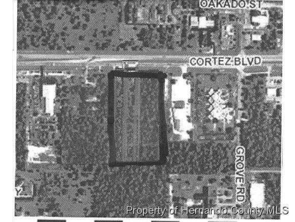 Real Estate for Sale, ListingId: 32304132, Brooksville,FL34613