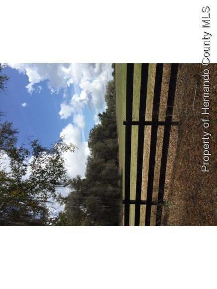 Image of Acreage for Sale near Brooksville, Florida, in Hernando County: 184 acres