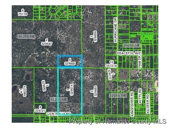 Image of  for Sale near Weeki Wachee, Florida, in Hernando County: 100 acres