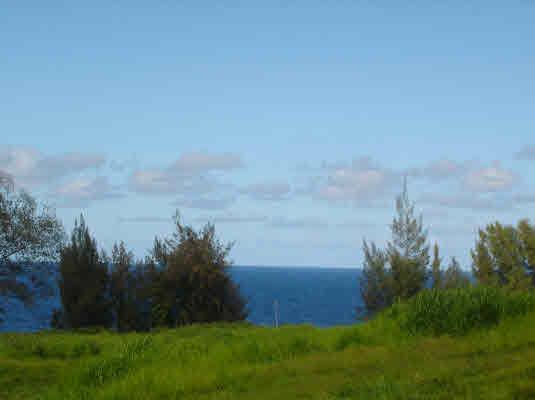 Real Estate for Sale, ListingId: 14591488, Pepeekeo, HI  96783