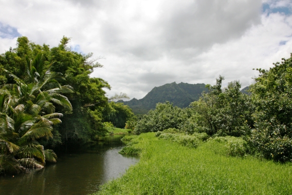 Real Estate for Sale, ListingId: 15418658, Hanalei, HI  96714