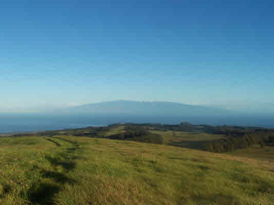 primary photo for Kohala Mountain Rd Lot #: 1-A-2, Hawi, HI 96719, US