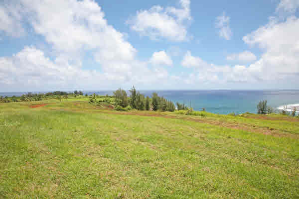 Real Estate for Sale, ListingId: 17077161, Moloaa, HI  96714