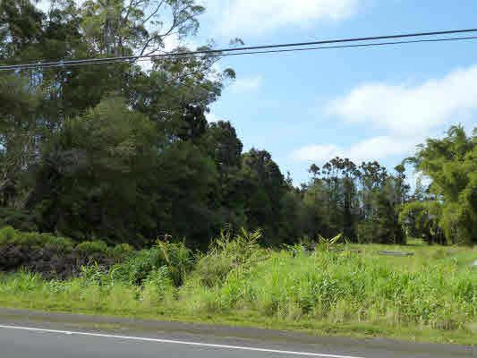 Land for Sale, ListingId:26521078, location: VOLCANO RD Volcano 96785