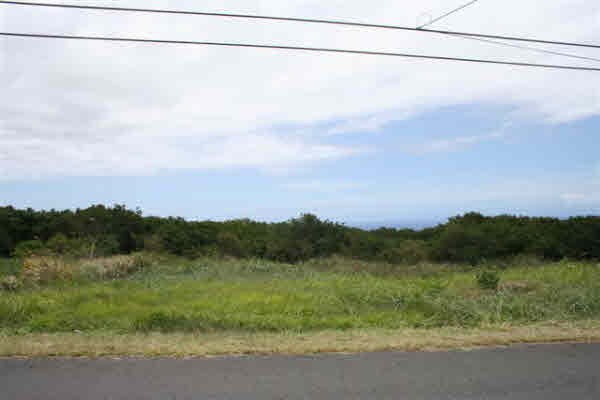 Real Estate for Sale, ListingId: 21166352, Naalehu, HI  96772