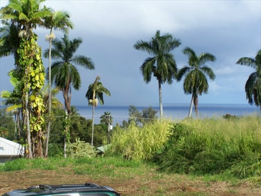 Real Estate for Sale, ListingId: 21546590, Hakalau, HI  96710