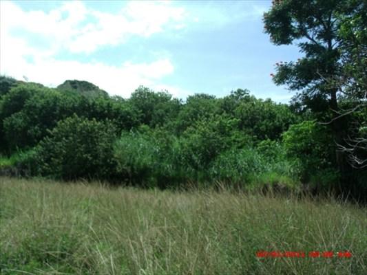 Real Estate for Sale, ListingId: 28852070, Holualoa,HI96725