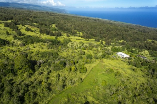 Real Estate for Sale, ListingId: 22194591, Honokaa, HI  96727