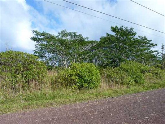 Real Estate for Sale, ListingId: 21821925, Keaau, HI  96749