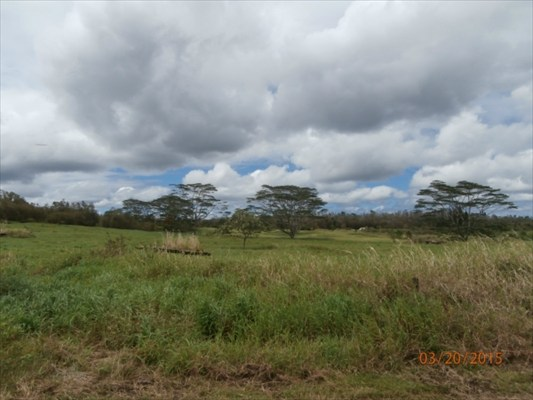 Land for Sale, ListingId:22218555, location: S MIDDLE RD Pahoa 96778