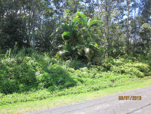 Real Estate for Sale, ListingId: 22595573, Pahoa, HI  96778
