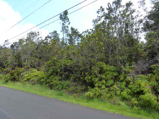 Real Estate for Sale, ListingId: 23383967, Volcano, HI  96785