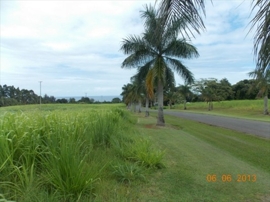 Real Estate for Sale, ListingId: 23946281, Pepeekeo, HI  96783