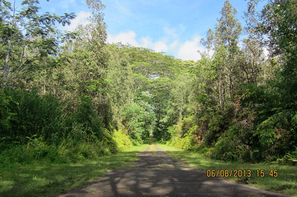 Real Estate for Sale, ListingId: 24154589, Pahoa, HI  96778