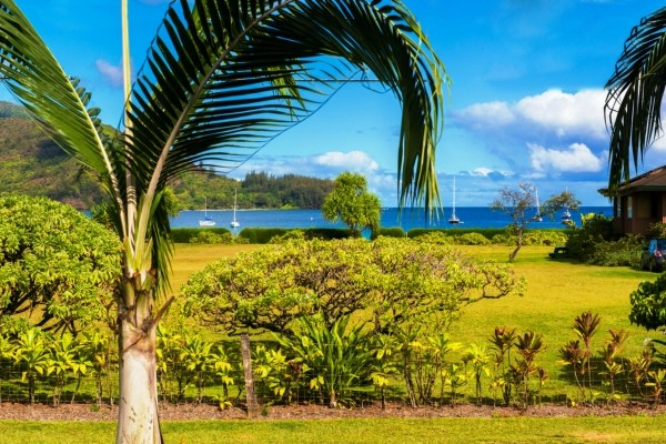 Real Estate for Sale, ListingId: 24238683, Hanalei, HI  96714