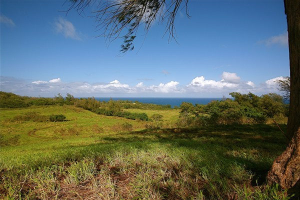 Land for Sale, ListingId:24392213, location: AKONI PULE HWY Kapaau 96755