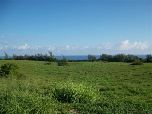 Land for Sale, ListingId:26292056, location: Akoni Pule Hwy Kapaau 96755