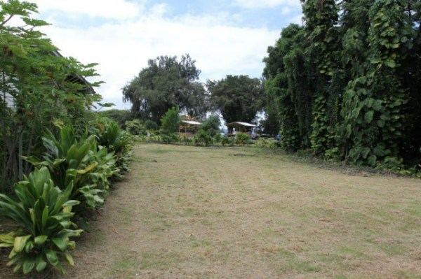 Real Estate for Sale, ListingId: 24581529, Hilo,HI96720