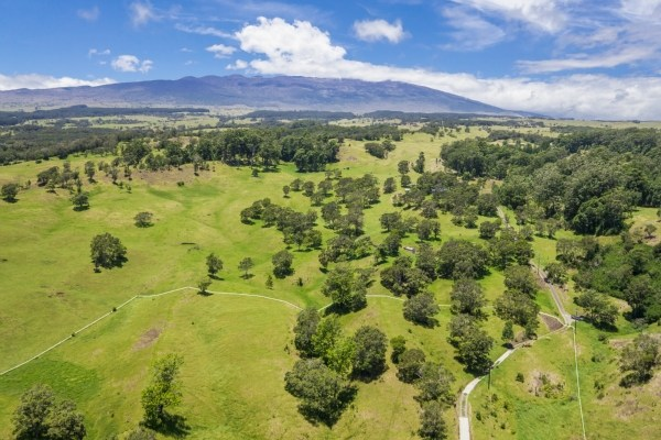 Real Estate for Sale, ListingId: 25126843, Honokaa, HI  96727