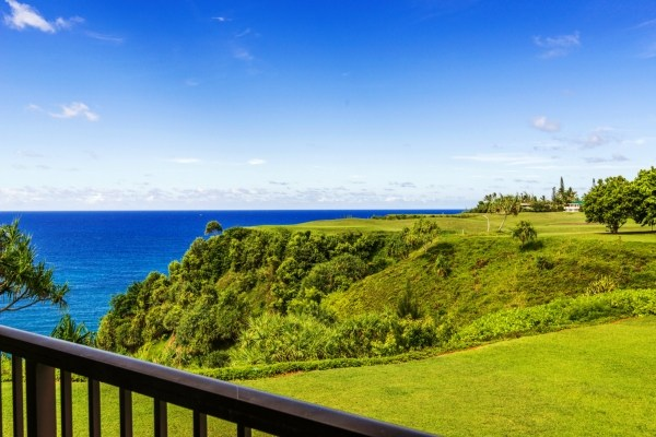 Real Estate for Sale, ListingId: 24813396, Princeville, HI  96722