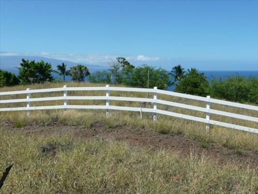 Real Estate for Sale, ListingId: 24854015, Kamuela,HI96743
